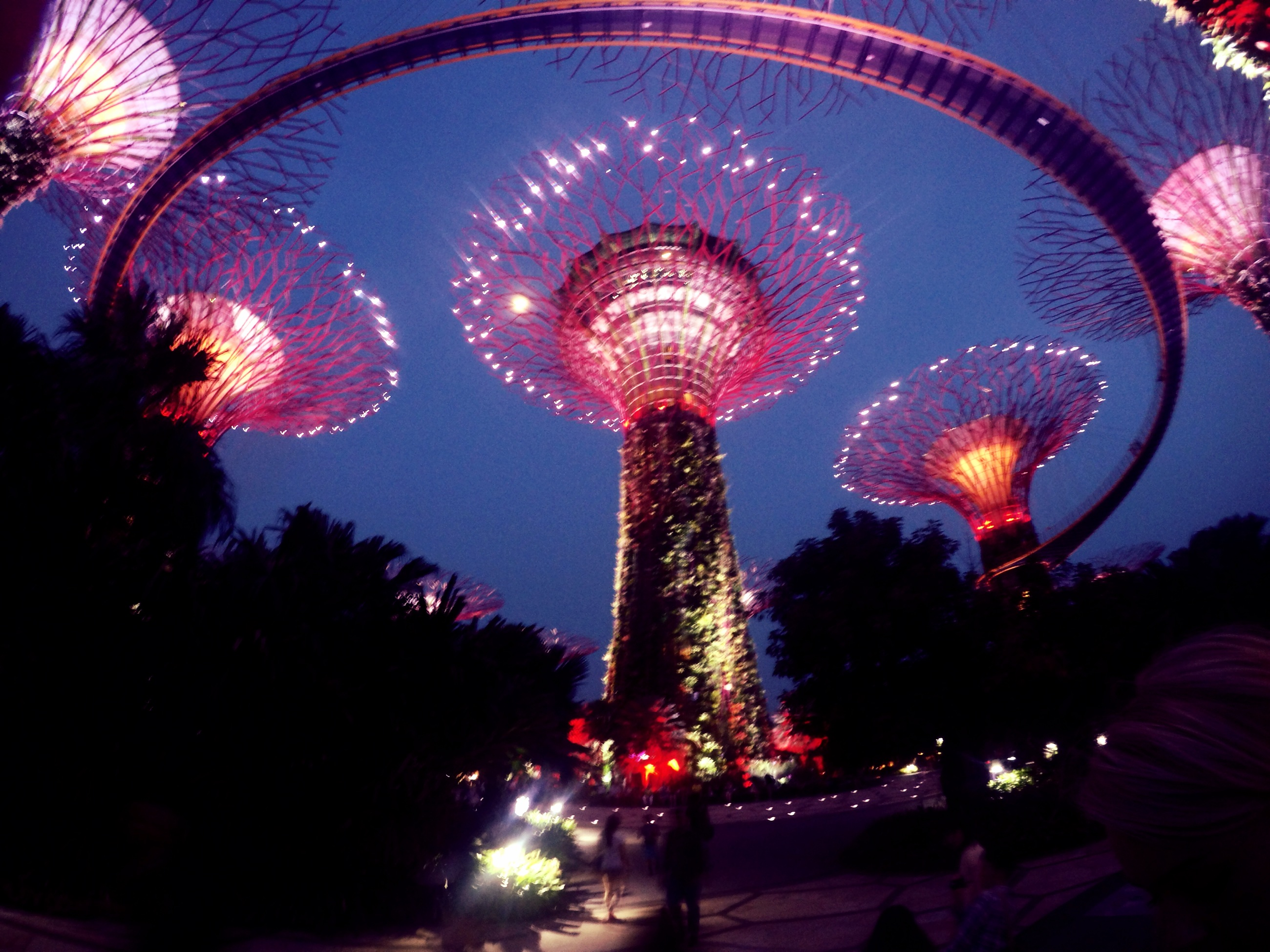 Garden By The Bay Eateries how to: see the light show at the gardensthe bay from every